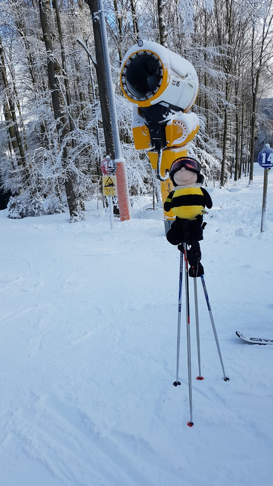 Snow fun – Skitag 2020