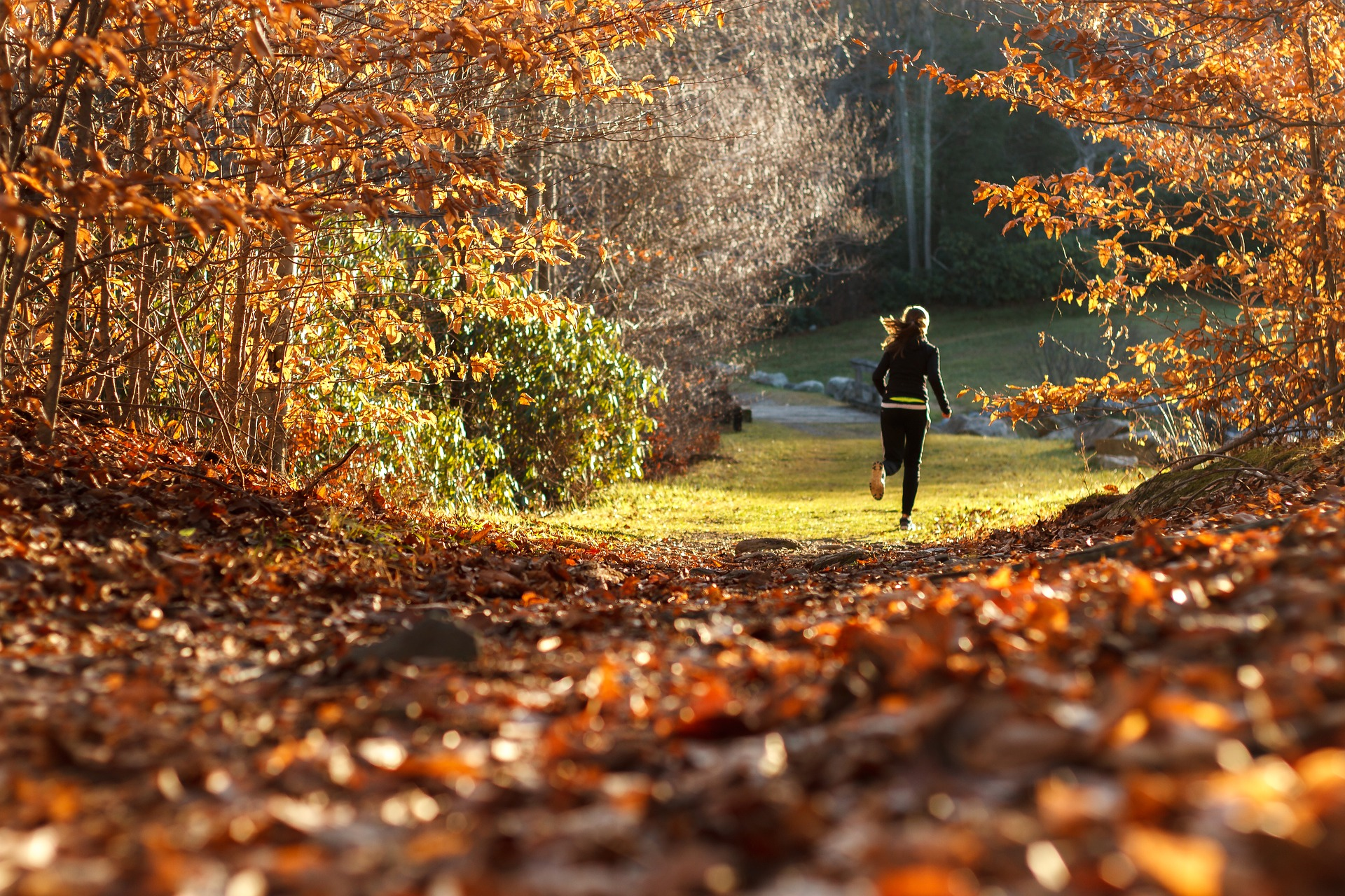 #läuftbeikolping – Waldlauf Hinsbeck